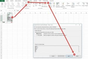 Remove Apostrophe in Excel using Text to Columns