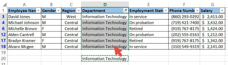 Copy and Paste Information Technology in all filtered rows