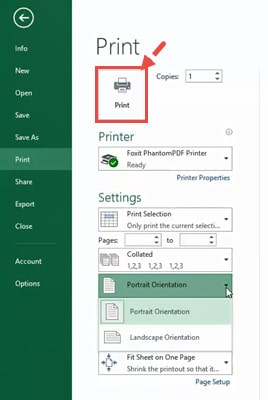 Click on the Print option